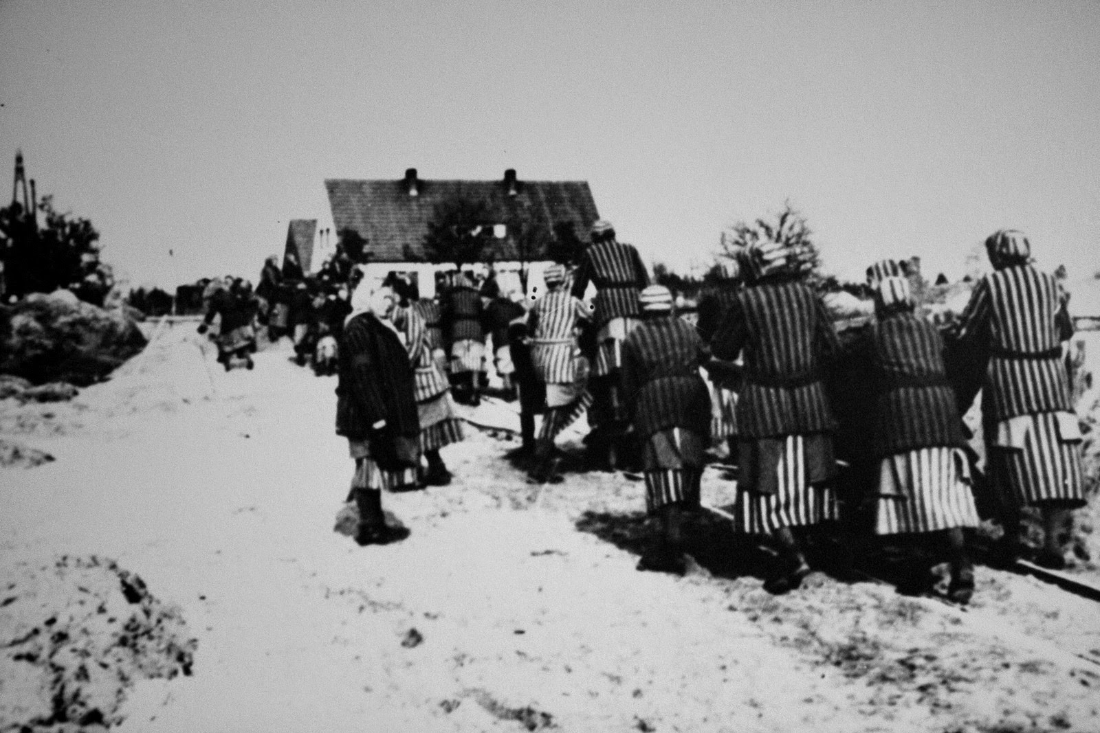 an introduction to the history and origins of concentration camps during world war two A brief history of japanese american relocation during world war ii two-thirds of them american many remained in justice camps for the duration of the war.