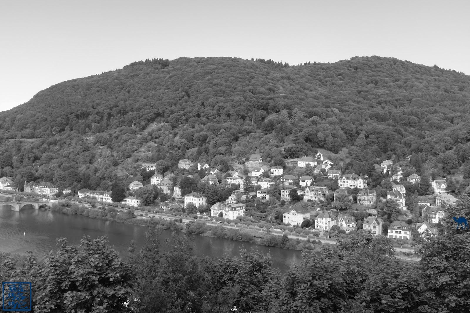 Le Chameau Bleu -  Blog Voyage Heildeberg Allemagne - Paysage de  Heidelberg