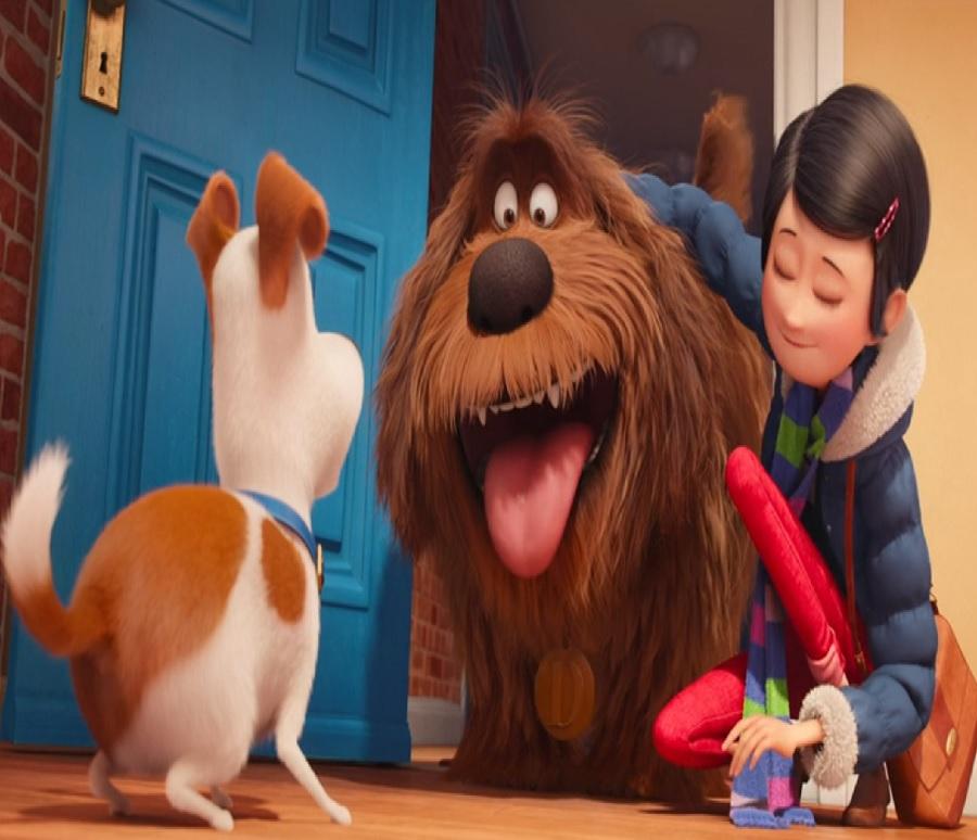 A Dog Named Duke Review