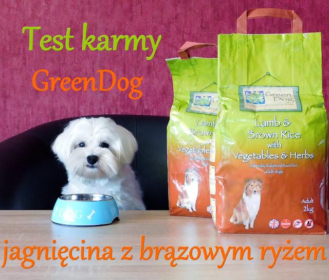 greendog jagnięcina z brązowym ryżem