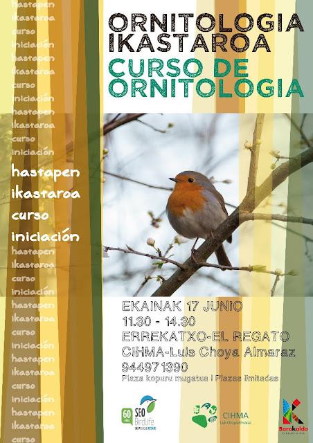 Cartel del curso gratis para familias de iniciación a la ornitología