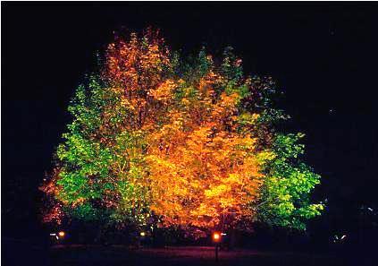 Outdoor Lighting Design Calculations Part One