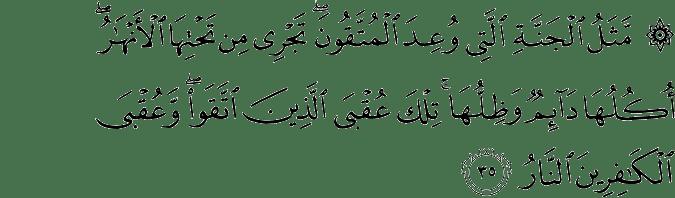 Surat Ar Ra'd Ayat 35