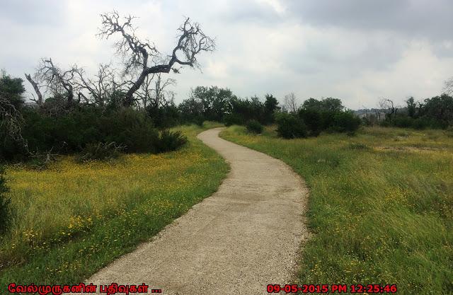 Snake Chase Trail San Antonio