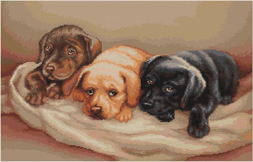 "B434 ""Three dogs"" Luca-S"