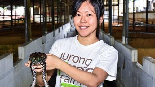 Công chúa ếch Chelsea Wan của đảo quốc Sư Tử Singapore