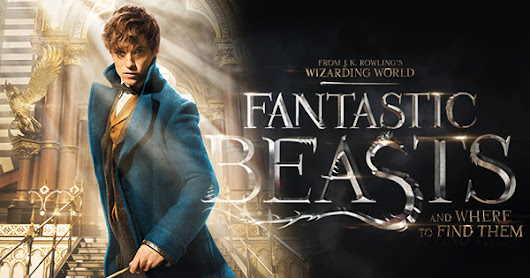 'Fantastic Beasts and Where to Find Them' Blu-ray Combo Pack: The Fairy Blog Review
