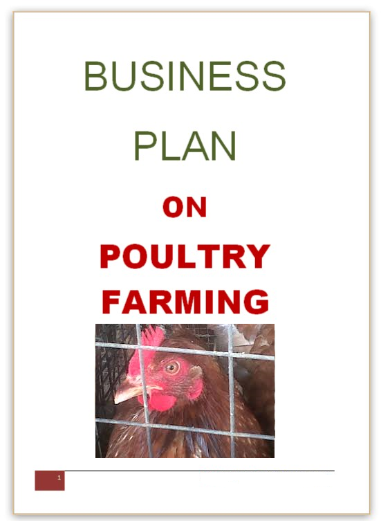 Starting Broiler Poultry Farming Business Plan (PDF)