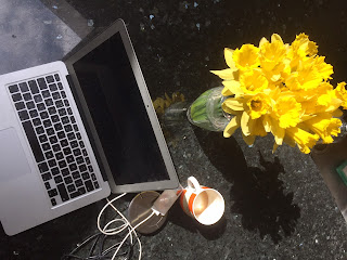 Daffodils and laptop