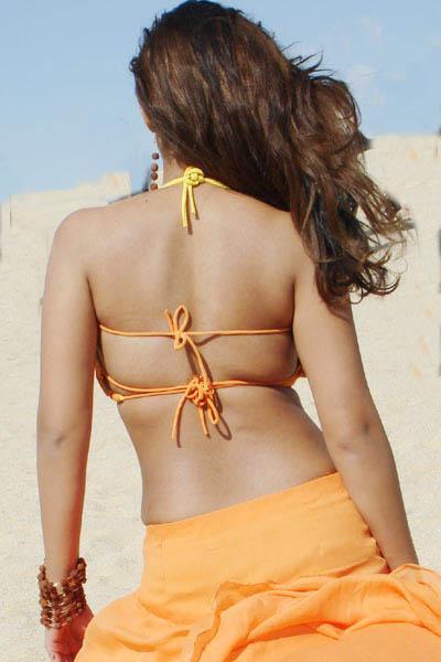 Telugu Actress Nayanthara Sexy Back Pictures-1285