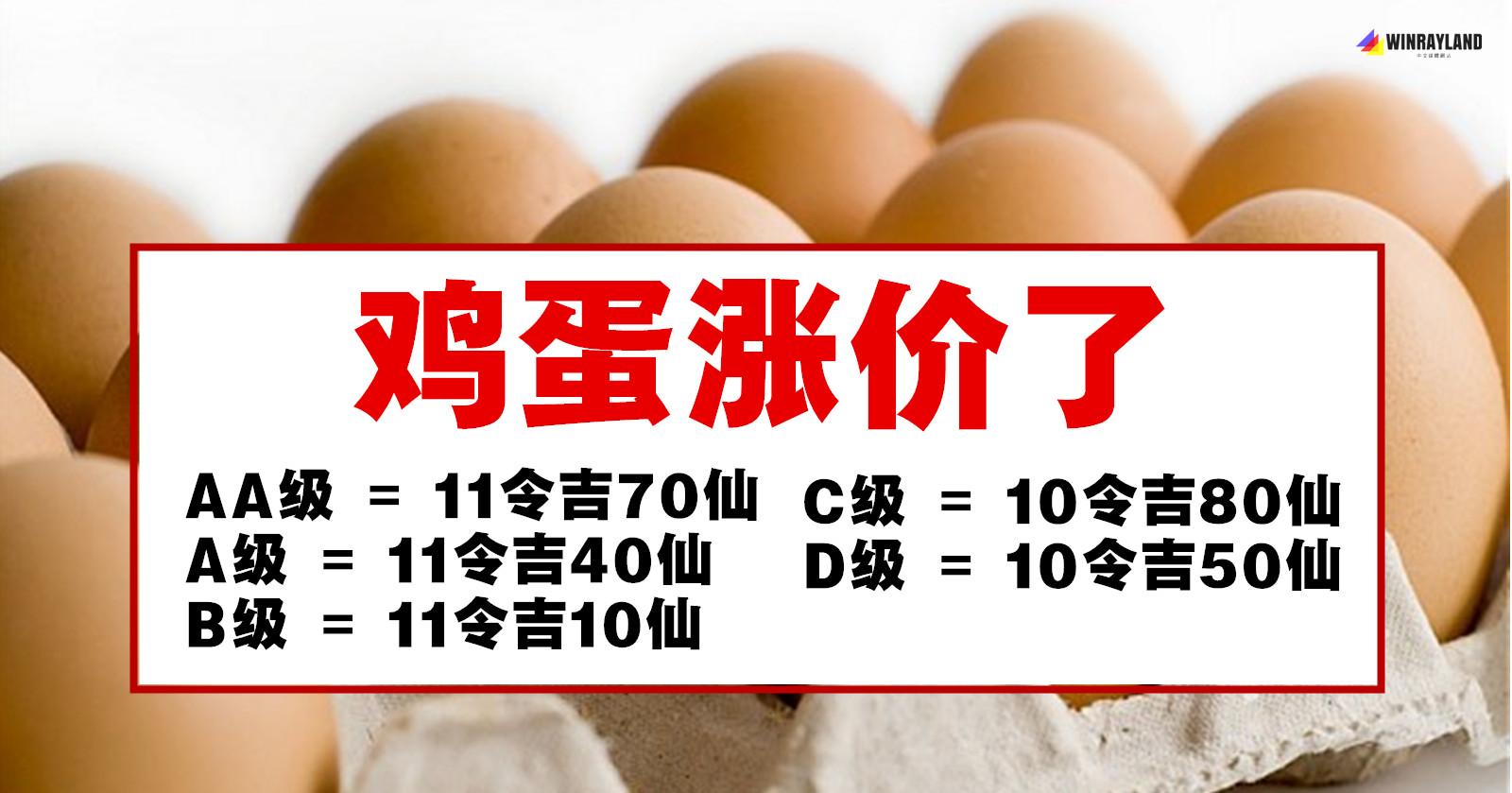 鸡蛋涨价了!