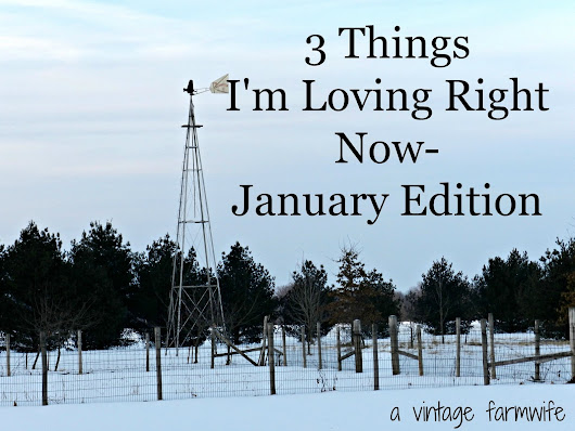 Three Things I'm Loving in January