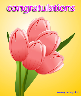 wishes picture messages tulips flowers congratulations greetings