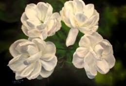 lukisan bunga melati