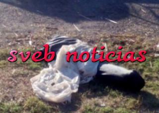 Hallan a mujer ejecutada y embolsada en Panuco Veracruz