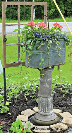 Adding Vertical Interest to the Flower Garden