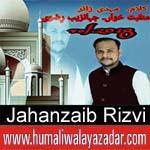http://www.humaliwalayazadar.com/2018/03/jahanzaib-rizvi-manqabat-2018.html