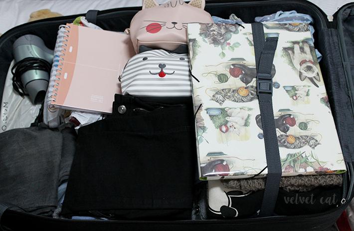 Erasmus belfast maleta