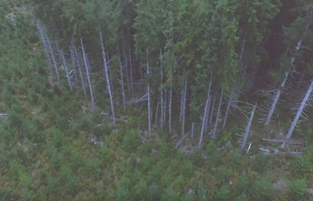 Why not use drones to find a bigfoot - godlikeproductions.com