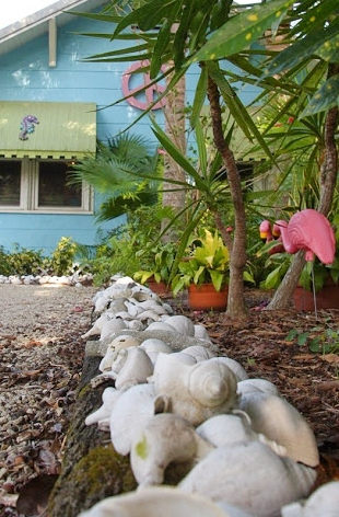 Shell Edging Driveway Gardening