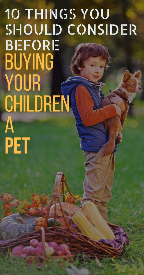 10 Things You Should Consider Before Buying Your Children A Pet