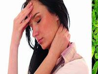 Sambiloto Bisa Atasi Meningitis (Radang Selaput Otak)