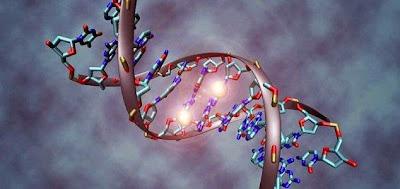 DNA Sanggup Bertahan di Luar Angkasa