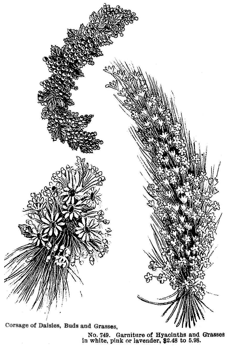 Corsage of Daisies, Buds and Grasses, Garniture of Hyacinths and grasses 1890