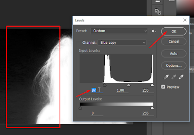Cara Mudah Seleksi Rambut di Photoshop