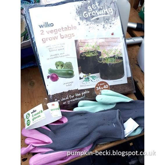 Wilkinsons Vegetable Grow Bags perfect rhubarb