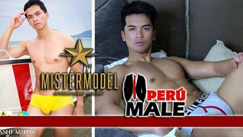 Mister Model International Philippines 2017
