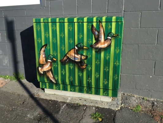 13-Three-Ducks-Paul-Walsh-Decorating-Utility-Boxes-with-Art-in-New-Zealand-www-designstack-co