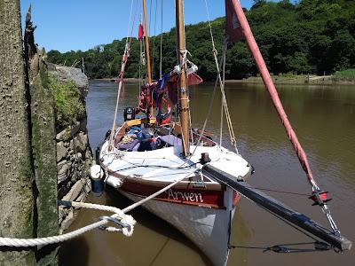 John welsford navigator arwen