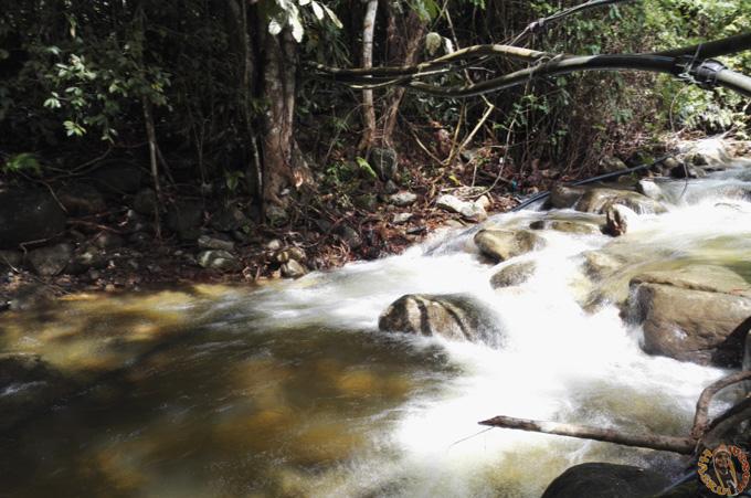 Salak Denai Chalet - Air Sungai