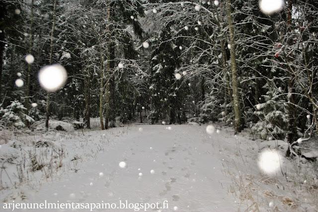 aurinkoloma, joulu, juhla, valmistelut, odotus, piristys, valo, lumi