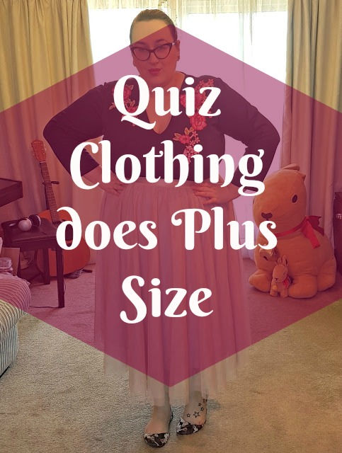 Quiz Clothing Plus size - Embroidered dress