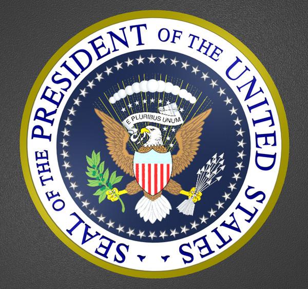Ways executive branch u s goverment through various laws