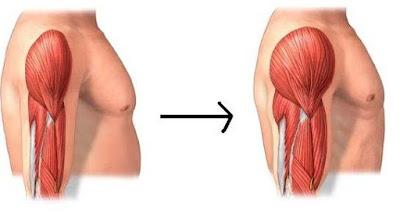 Plan nutricional para ganar masa muscular