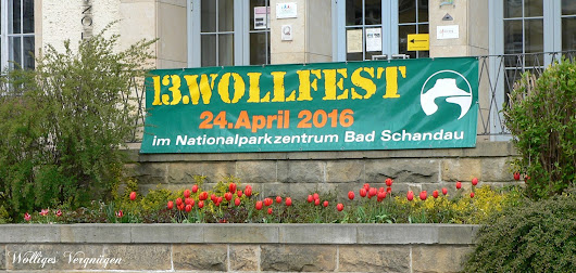 13. Wollfest in Bad Schandau
