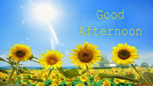 New Good Afternoon Messages Quotes In Hindi English Language