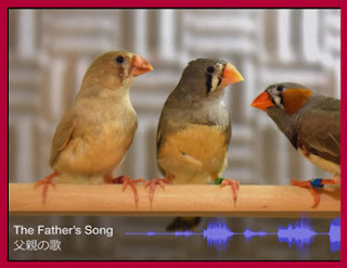 http://mashable.com/2016/06/22/neuroscience-songbirds-study/#HuC4p8pwbEqz
