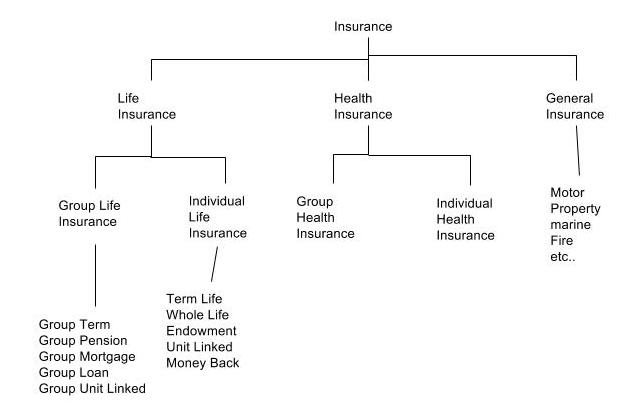 Way2know Insurance Domain Knowledge