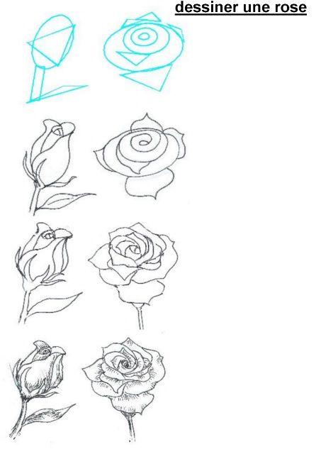 Fotos Lápis para iniciantes: flores em etapas
