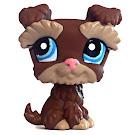 Littlest Pet Shop Tubes Schnautzer (#2270) Pet