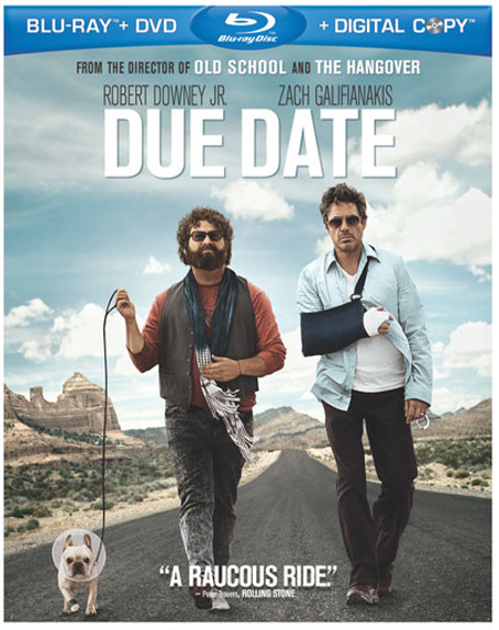 Due Date 2010 Hindi Dubbed Dual BRRip 300mb