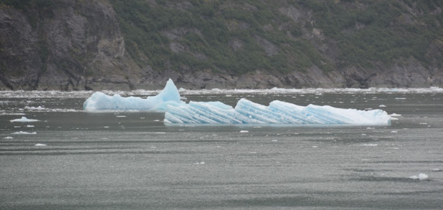 Tracy Arm ice
