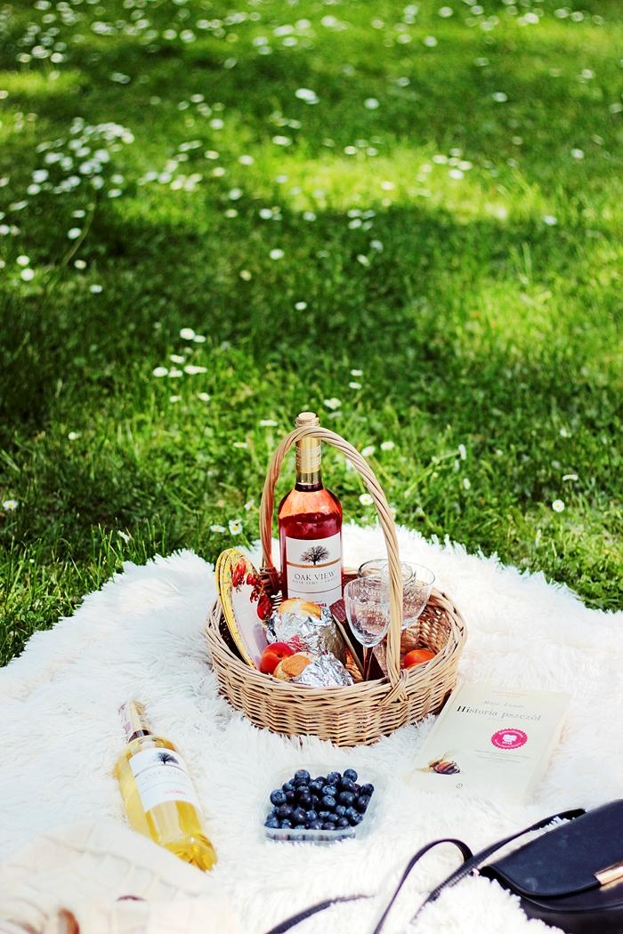 Piknik w parku zdjęcia