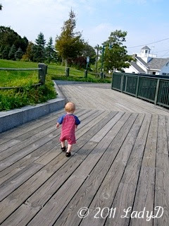 Grandson walking in beautiful Maine