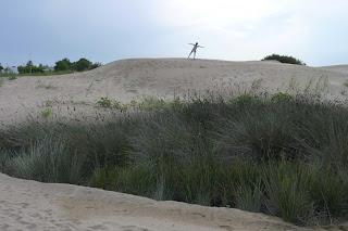 Las dunas de la playa de Riumar.