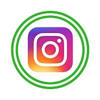 https://www.instagram.com/carolpalmer_oilyhabit/